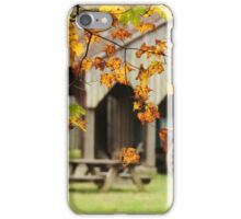 changing colors at the barn iPhone Case/Skin