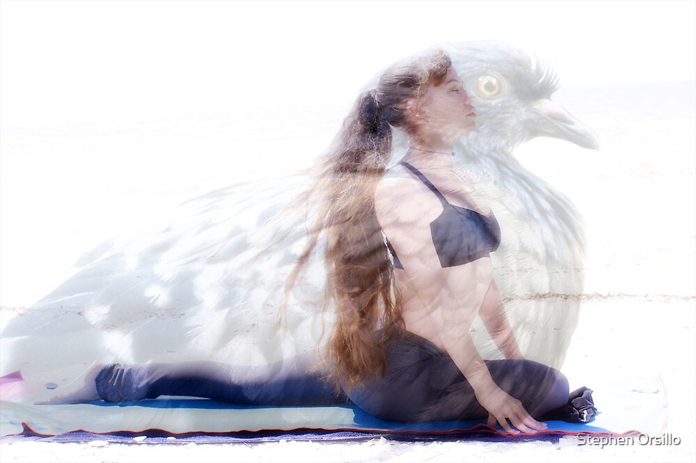 woman in yoga pose inside pigeon by Stephen Orsillo