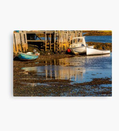 Blue Rocks, Nova Scotia Canvas Print