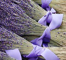 Lavender by edarlingphoto