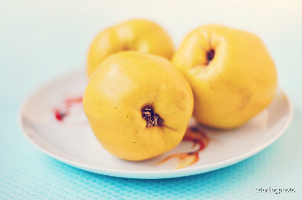 Quince, Thrice by edarlingphoto