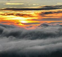 Haleakala Sunrise by Barbara  Brown