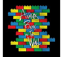 Brick in the Wall Photographic Print