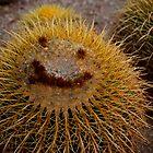Desert Smile by rrushton