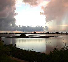 Rainstorm across the way by ♥⊱ B. Randi Bailey