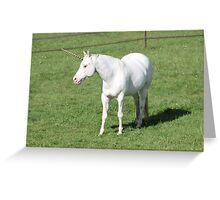A Real Live Unicorn! Greeting Card
