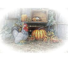 Autumn's Roost Photographic Print