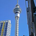 Auckland Looking Up to Sky Tower by TonyCrehan