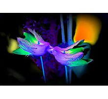KISSING ORCHIDS Photographic Print