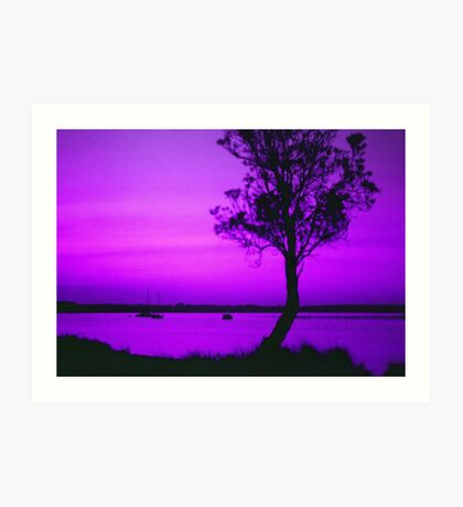 Sunset in Purple and Pink Art Print