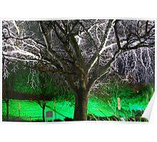 Winter's tree ............. Poster