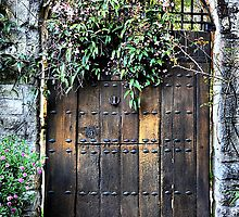 Garden Door - Yengo - Mt Wilson NSW Australia by Bev Woodman