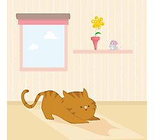 Playful cat Photographic Print