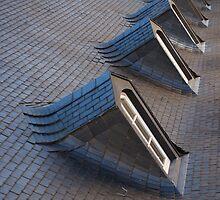 Roofline by Rene Fuller