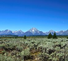 Grand Tetons  by pshootermike