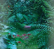 The Glade by Emma  Wertheim ~