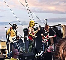 The Sheepdogs by BonnieToll