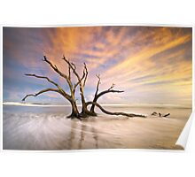 The Calm - Folly Beach at Sunset - Charleston, SC, USA Poster