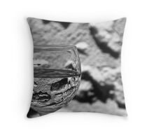 Wall Through A Glass Throw Pillow