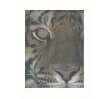 Tiger- Half faced Art Print