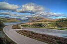 Kylesku Bridge II by Chris Cherry