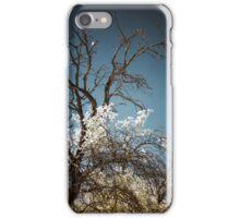 Infrared III iPhone Case/Skin