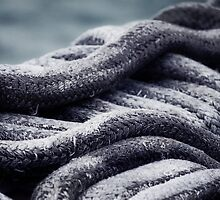 The Right Rope by Colureful