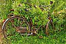 Your Bike? by Jo Nijenhuis
