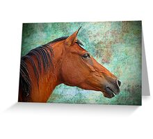 Connemara Pony Mare Greeting Card