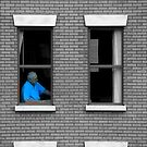 Rear Window by Susan Bergstrom