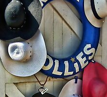 Rock Follies by lynn carter