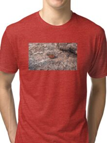 Disguised nature Tri-blend T-Shirt
