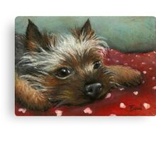 Yorkie and hearts Canvas Print