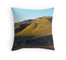 Apgar Mountains (Glacier National Park, Montana, USA) Throw Pillow