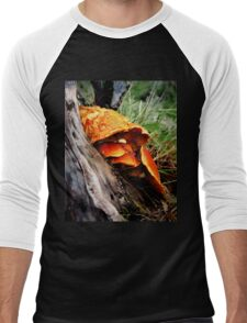 Fungi Men's Baseball ¾ T-Shirt