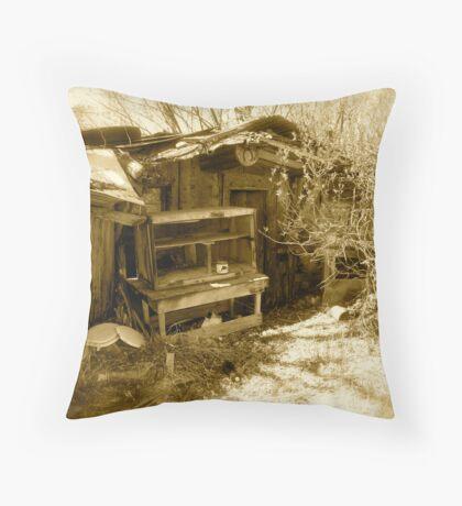 The Old Shed- Bear Lake, Utah Throw Pillow