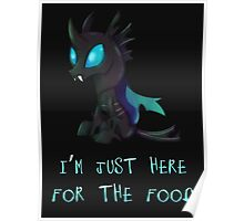 My Little Pony - MLP - Changeling Poster