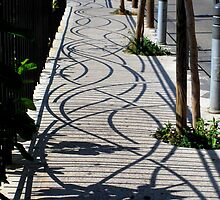 Shadow path by su2anne