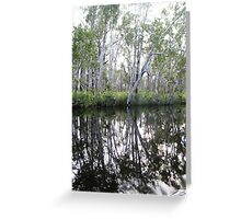 Noosa River Everglades - Reflections 1 Greeting Card