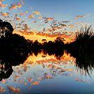 Eyenesbury Lake at Sunset by jonxiv