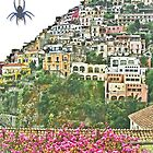... a little spider in Positano / Italy  ( 3 ) by Rachel Veser