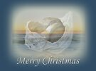Merry Christmas Card - Seashell and Surf by MotherNature