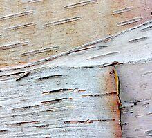 tactile whites by yvesrossetti