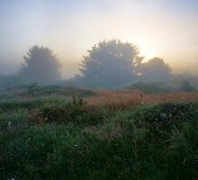 Dawnscape by Ulla Jensen