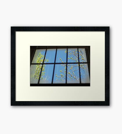 spring outside my cell Framed Print