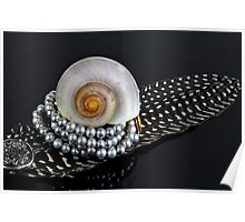 Shell, feather and a pearl necklace Poster