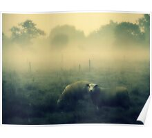Dreaming of Sheep - JUSTART © Poster
