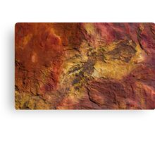 rock patterns at gantheaume point, broome Canvas Print