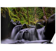 Just As I Thought  ~ Santiam River ~ Poster