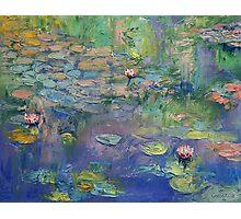 Water Garden Photographic Print